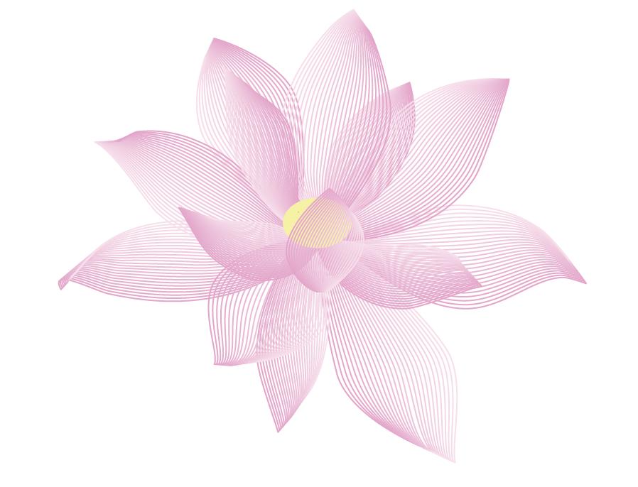 Chinese Symbols Lotus Flower Mfa Journey