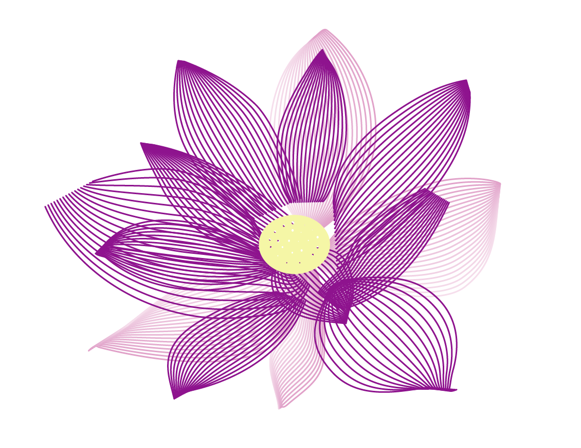 Chinese Lotus Flower Drawing Viewing Gallery